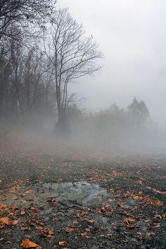 Chill mist of late autumn.