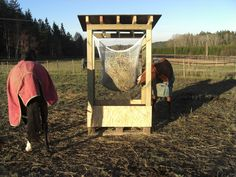 slow feeding for the horses Horse Hay, Horse Paddock, Horse Stables, Horse Farms, Horse Love, Hay Feeder For Horses, Horse Feeder, Dream Stables, Dream Barn