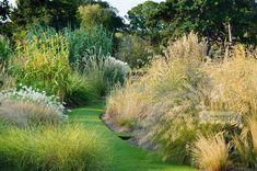 Howard Rice Garden Photography - Gallery: Gardens. Återigen, helt fantastiskt. Gräs ska jag ha i min trädgård. Dags att börja sammla på sej..