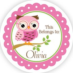 Name Tag Stickers   Adorable Pink And Green School Owl Personalized Name  Label Tag Stickers   This Belongs To   Back To School Name Labels