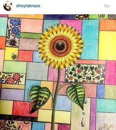 Sunflower Inspiration Adult ColoringColouringColoring BooksJohanna Basford Secret GardenSecret