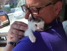 This little buddy was born with water on the brain and twisted legs, but he has a big heart and an incredible will to survive! A woman saved him from across the country after the shelter had given up on him.  	 Super Hero The Hydrocephalic Cat and Zeke 	Zeke the tuxedo kitten was just 13 weeks old...