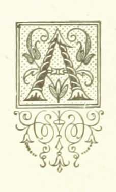 Image taken from page 252 of 'Floral Poetry and the language of flowers. With coloured illustrations. [The editor's preface is signed J. H. S.]'   by The British Library