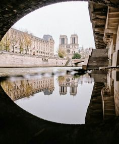 Reflection from a puddle along Seine