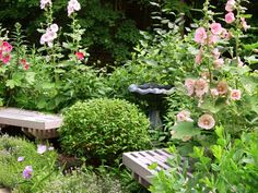 Hollyhocks flank the benches for a sweet cottage-garden look in this design by RMSer horselady.