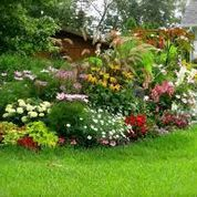 Gardeners everywhere are discovering that Kincaid plant tags are a cut above the rest!! http://davesgarden.com/community/forums/t/1175444/
