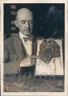 1928 Dr J W Gidley Paleontologist National Museum Skull Teeth  Press Photo