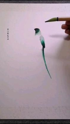 Easy Butterfly Drawing, Easy Flower Drawings, Art Drawings Sketches Simple, Bird Drawings, Easy Drawings, Pencil Art Drawings, Watercolor Paintings For Beginners, Canvas Painting Tutorials, Watercolor Video