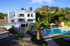 Unique property with a unique garden #Carvoeiro
