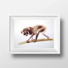 Check out Watercolor painting of loris, Original Painting, Kids Illustration, Animal Illustration, Kids Room Decor, Wall Decor, Animals Painting, on artolgashef