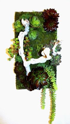 Artificial Succulent Wall Garden Artificial Succulents, Succulent Wall, Living Room, Garden, Projects, Color, Design, Succulent Wall Diy, Log Projects