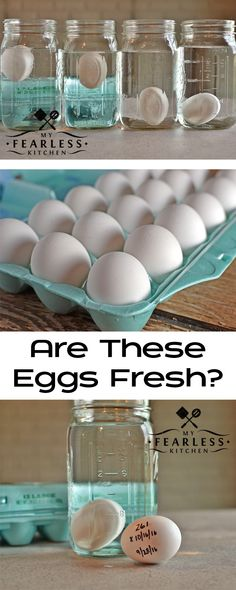 Are These Eggs Fresh? from My Fearless Kitchen. Have you ever wondered how old those eggs in your refrigerator are? You can quickly and easily test eggs for freshness, and never wonder again! Plus, get some great recipes for cooking with eggs!