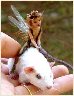 fairy on a mouse by Michelle Bradshaw