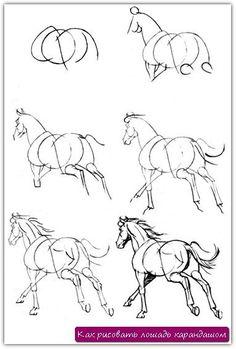 Как рисовать лошадь карандашом. Урок №19