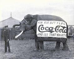 Elephant advertising | VIVA Heather Mills » No gossip, no cry