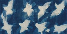 Cyanotype photogram on rice paper and Ink 2014