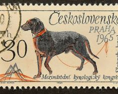Stamp: Slovakian Kopov (Canis lupus familiaris) (Czechoslovakia) (World Dog Show at Brno and the International Dog Breeders Co) Mi:CS 1448 Monk Seal, Postage Stamp Art, Hunting Dogs, Dog Show, Dogs Of The World, Dog Love, Japan, Dog Breeders, Handmade