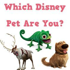 Which Disney Pet Are You quiz I GOT PASCAL OH MY GOODNESS