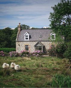 Décor Inspiration: A Relaxed & Wicker-Filled Home in Comporta, Portugal Cottage In The Woods, Cozy Cottage, French Cottage, Scottish Cottages, Garden Cottage, Scottish Highlands, Highlands Scotland, Country Life, Country Living
