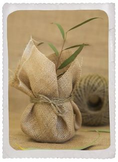 Plant - DIY wedding favor / favour. #Sack. @Celebrity Style Weddings- I think Chris would like this idea :-)