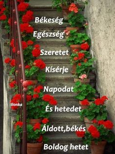 Goeie More, Good Morning Greetings, Ladder Decor, Outdoor Structures, Goeie Nag, Afrikaans, Prayer, Mindfulness, Quotes