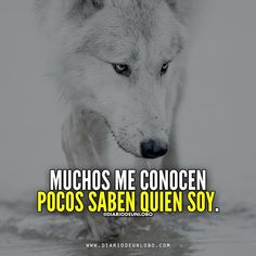 Diario de un Lobo