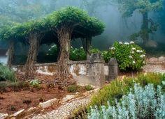 Старый сад в городе Синтра, Португалия.