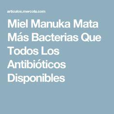 Miel Manuka Mata Más Bacterias Que Todos Los Antibióticos Disponibles