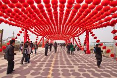 """red delight"" - flower festival, Zhejiang Province"