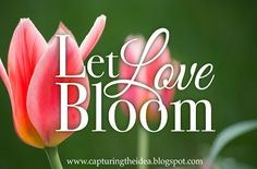 "God is Love: Let Love Bloom: Dawn's story. Would you like to learn more about my latest release, Rebecca's Song? I was a guest on the ""God is Love: Let Love Bloom"" blog, and Alexis Goring  asked some great questions!"
