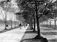 The road not taken: Protected bike lanes were all the rage in 1905