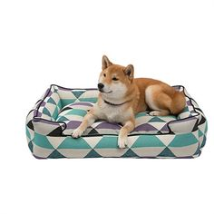 Jax and Bones Lounge Dog Bed – Origami Plum~ Mom please shop for me at www.zoedoggy.com
