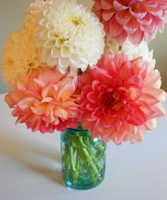 zinnias and dahlias with the blue mason jar