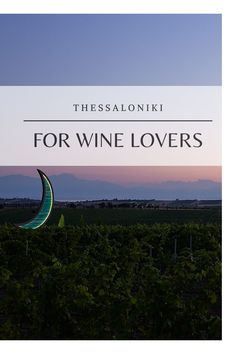 Wine Tourism, Thessaloniki, Wines, Lovers, Celestial, Outdoor, Outdoors, Outdoor Games, The Great Outdoors