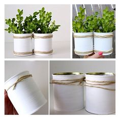 Diy pot plants using tin cans Indoor Plants Low Light, Indoor Plant Pots, Potted Plants, Tin Can Flowers, Bee Friendly, Do It Yourself Projects, Planter Pots, Recycling, Relax