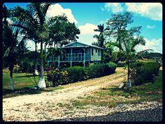 Sur la route entre Belize City et San Ignacio