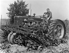 Man operating a McCormick Farmall Super M-TA tractor with a front row mount cultivator in a field. Antique Tractors, Vintage Tractors, Vintage Farm, Vintage Tools, Farmall Tractors, John Deere Tractors, International Tractors, International Harvester, Cat Farm
