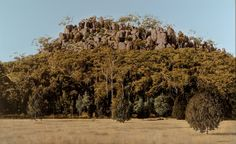 william delafield cook - he and fred williams are the masters of australian landscape
