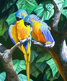 ART BLue Throated Macaws Cross Stitch PatternLK by JAYLM2006, $4.95