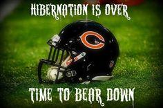 Bear down Chicago Bears Bears Football, Best Football Team, Football Baby, Football Memes, Football Season, Football Stuff, Chicago Bears Pictures, Football Pictures, Bears Game