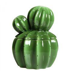 Cactus Storage Jar - Medium @ Howkapow
