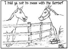 #horses #farrier