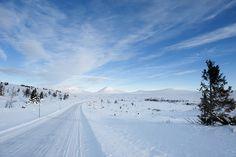 Start of National Tourist Route Rondane, west of Muen.    Photo: Roger Ellingsen