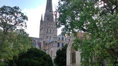 https://flic.kr/p/pfjQUK | Heritage Open Days 2014 | View of Norwich Cathedral from Bishop's Garden
