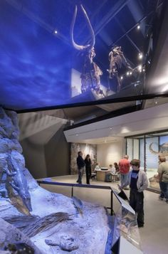 Natural History Museum of Utah - under water experience