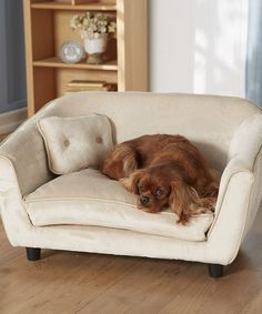 enchanted home mackenzie pet sofa 84 lancaster leather 8 best pets images beds dog cream astro settee bed