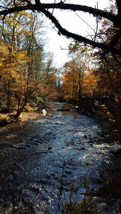 Deep Creek, Great Smoky Mountains National Park, Bryson City NC