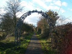 The Blackberry Arch