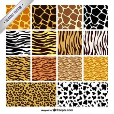 animal-texture