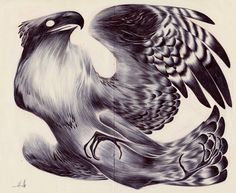 Another commission down. This time an osprey!